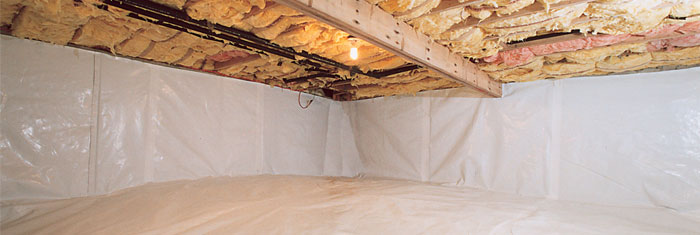 Crawl Space Repair in [state]