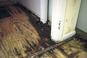 Basement Flooring Waterproofed Amp Mold Resistant Basement