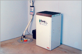basement mold dust mites and musty odors preventing mold growth in
