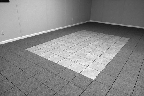ThermalDry® Basement Carpeting; ThermalDry® Basement Carpeting ...