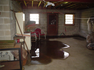 Water In Basement What To Do When Your Basement Leaks