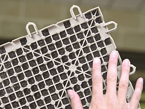 ThermalDry® Basement Floor